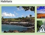 What Are Habitats?
