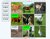 Animal Labelling in Spanish