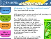 Spotlight On Rainforests