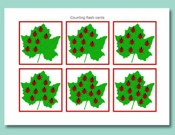 Counting Flash Cards, Ladybirds